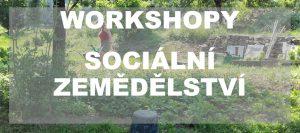 Praktické semináře a exkurze